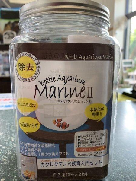 画像1: ボトルアクアリウム マリンII (1)